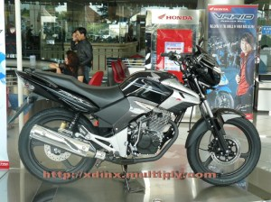 New Honda Tiger RC 2008